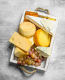 Different types of cheese with grapes on a white wooden tray. On a rustic background royalty free stock photography