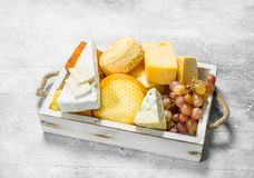 Different types of cheese with grapes on a white wooden tray. On a rustic background stock photo