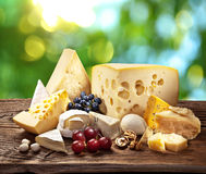 Different types of cheese over old wooden table. Different types of cheese over old wooden table with green leaves on the background royalty free stock images