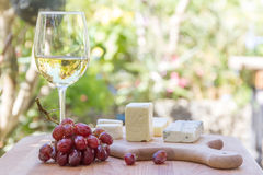 Different types of cheese with wine and grapes Stock Photos