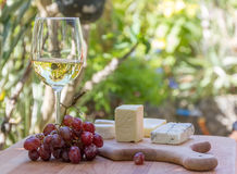 Different types of cheese with wine and grapes Stock Photography
