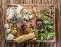 Different types of cheeses with nuts and herbs. Royalty Free Stock Image