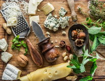 Different types of cheeses with nuts and herbs. Royalty Free Stock Images