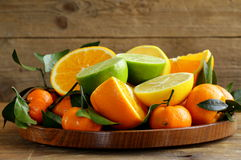 Different types of citrus fruits Royalty Free Stock Photo