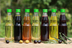 Different types of cooking oil Royalty Free Stock Image