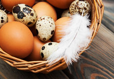 Different types of eggs in a basket Stock Images