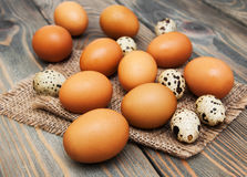 Different types of eggs Royalty Free Stock Photos