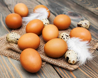 Different types of eggs Stock Images