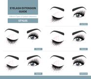 Different types of eyelash extensions. Styles for the most flattering look. Infographic vector illustration. Template for Makeup and cosmetic procedures Royalty Free Stock Photography
