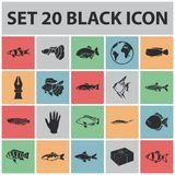 Different types of fish black icons in set collection. For design. Marine and aquarium fish vector symbol stock illustration Royalty Free Stock Photography