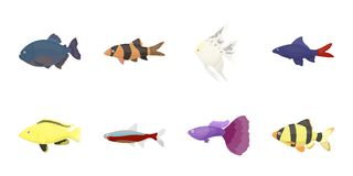 Different types of fish icons in set collection for design. Marine and aquarium fish vector symbol stock web Stock Photo