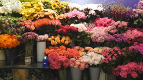 Different types of flowers in the store. London. England. United Kingdom. Flower shops of the city stock video footage