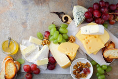 Different types of fresh Cheeses with grapes, honey, bread and walnuts on the slate background Stock Photography