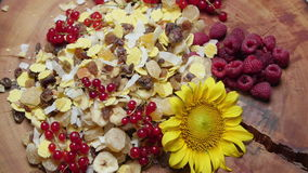 Different types of fresh and dried fruit, rotating stock video