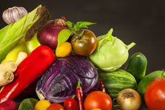 Different types of fresh vegetables on a wooden table. Harvesting vegetables on a farm. Healthy food. Different types of fresh vegetables on a wooden table Royalty Free Stock Images