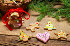Different types of gingerbread cookies and spruce Stock Photos