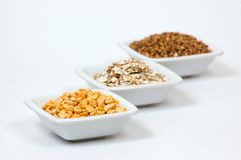 Different types of grain Stock Photography