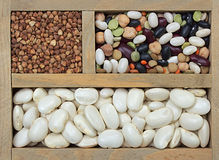 Different types of grain. As background Stock Photo