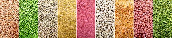 Different types of grains Stock Photos