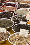 Different types of herbal tea royalty free stock photography