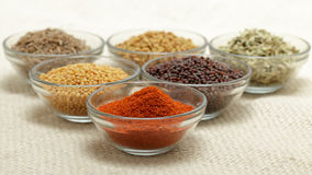 Different types of Indian spices in glass bowls. Royalty Free Stock Photos