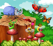 Different types of insects in garden vector illustration