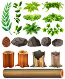 Different types of leaves and rocks Stock Image