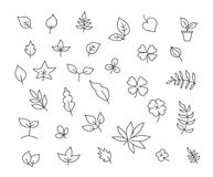 Different types of leaves set of various species of trees. And plants drawing decor. Hand drawn sketch vector stock black line illustration landscape. Pen or Stock Image