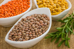 Different types of lentils Royalty Free Stock Photography