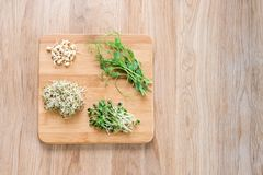 Different types of micro greens on wooden background. Healthy eating concept of fresh garden produce organically grown. As a symbol of health and vitamins from Royalty Free Stock Image
