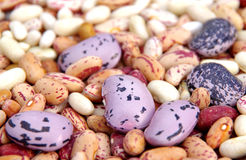 Different types of mottled beans Royalty Free Stock Image