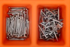 Different types of nails in a plastic box. Stock Images