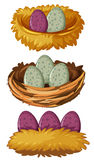 Different types of nests and eggs Stock Photography