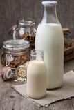 Different types of nut milk Stock Photography
