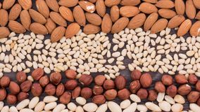 Different types of nuts in the form of stripes appear in the shot. Stop motion stock footage