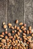 Different types of nuts in the nutshell. Royalty Free Stock Images