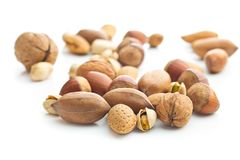 Different types of nuts in the nutshell. Hazelnuts, walnuts, almonds, pecan nuts and pistachio nuts isolated on white background royalty free stock photo