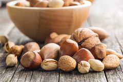 Different types of nuts in the nutshell. Stock Image