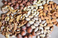 Different types of nuts Stock Images