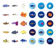 Free Different Types Of Fish Cartoon,flat Icons In Set Collection For Design. Marine And Aquarium Fish Vector Symbol Stock Stock Photos - 139092403
