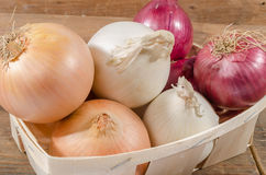 Different types of onions in a basket Royalty Free Stock Photography