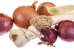 Different types of onions Royalty Free Stock Photography