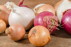 Different types of onions Royalty Free Stock Photo