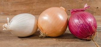 Different types of onions Stock Photography