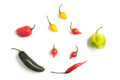 Different types of Pepper Spice Royalty Free Stock Images