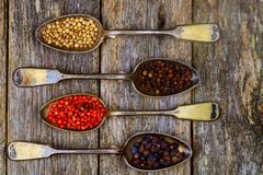 Different types of pepper spice in vintage spoons on wood background. Different types of spice peppers Royalty Free Stock Photo