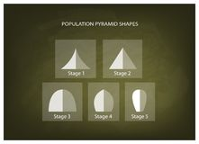 Different Types of Population Pyramids on Chalkboard Background Stock Images