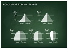 Different Types of Population Pyramids on Chalkboard Background Royalty Free Stock Photo