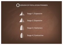 Different Types of Population Pyramids on Chalkboard Background Royalty Free Stock Images