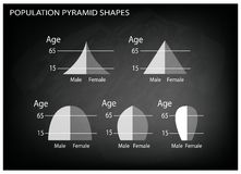 Different Types of Population Pyramids on Chalkboard Background Royalty Free Stock Image